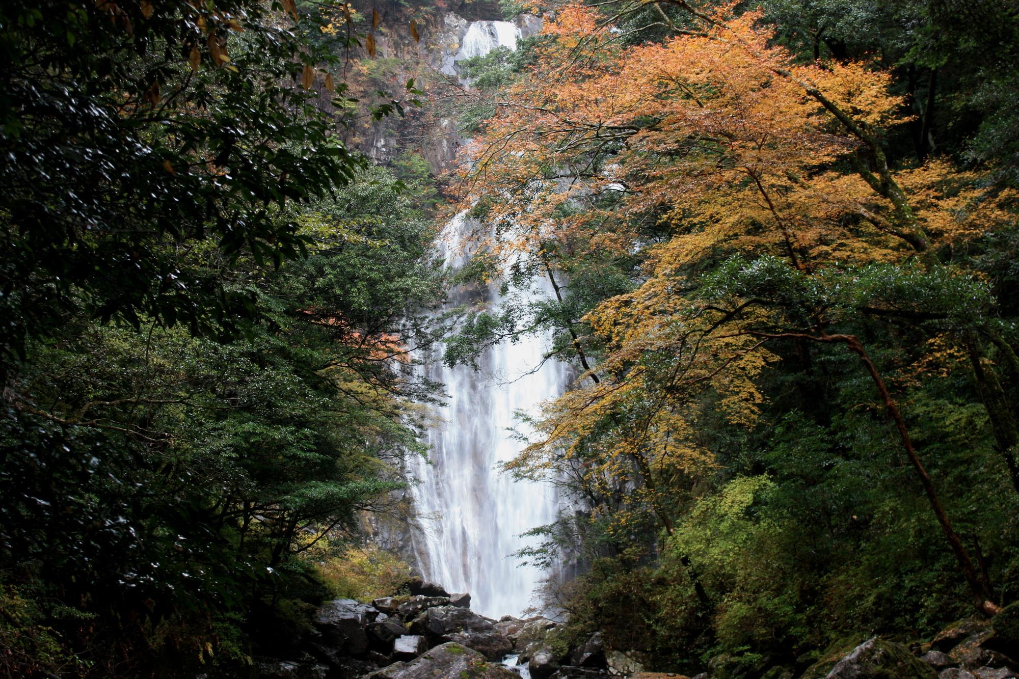 矢研の滝(やとぎのたき)